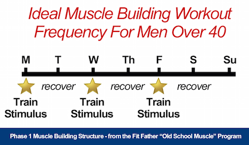 building muscle over 40 training frequency