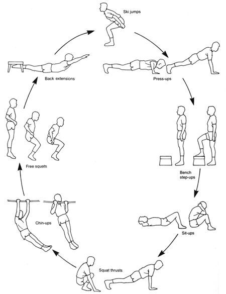 circuit-training-workouts-for-fighters weight loss workouts for men