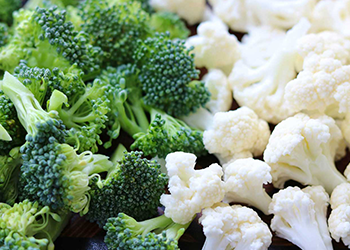 broccoli and cauliflower high protein low carb recipes