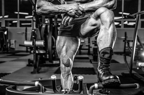 muscular legs leg workouts for men